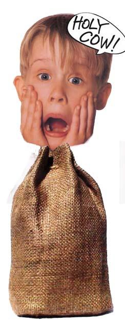 boy in a burlap bag