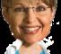 Superhero Sarah Palin