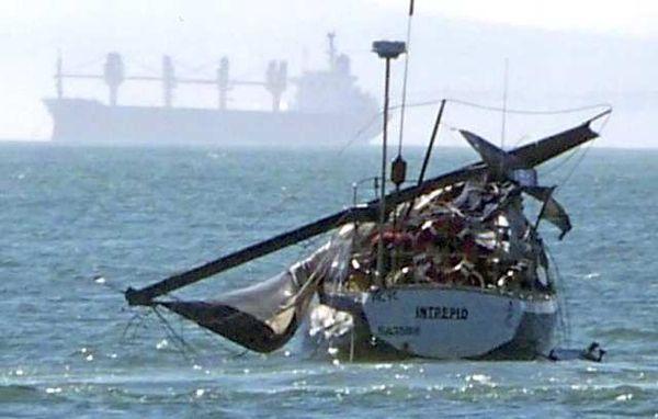 Whale breach wrecks sailboat yacht